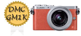 LUMIX DMC-GM1k 高価買取中
